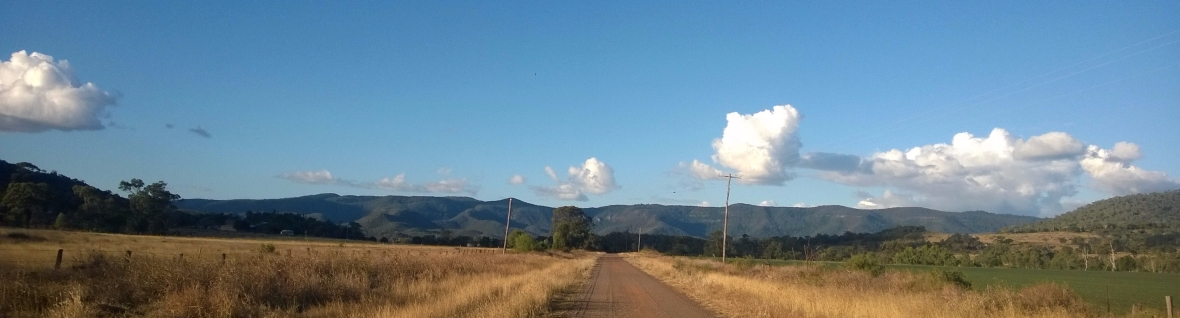 Photo of a view towards the Bunya Mountains